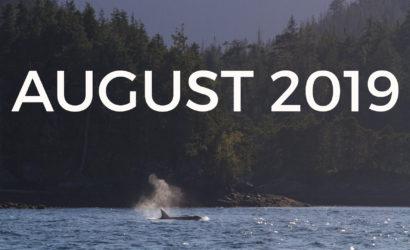 Baloga Yoga Whales Canada Orca