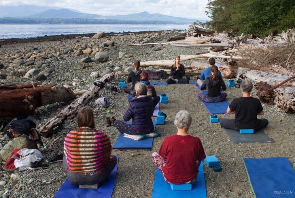 Baloga Yoga Canada Whale Orca