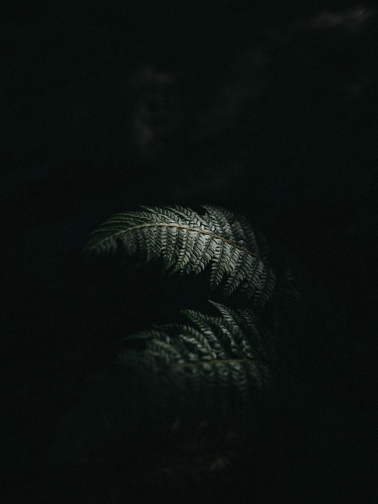 GND-FLORINE-JULIEN-019